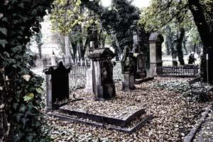 Вечерняя экскурсия по кладбищу