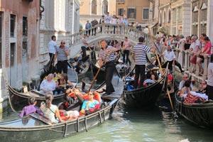 Венецианцы негодуют